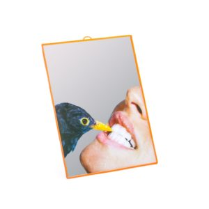 Seletti TOILETPAPER mirrors medium 17112 crow 1 1024x1024 300x300 - Specchio Mirrors Medium Seletti wears Toiletpaper